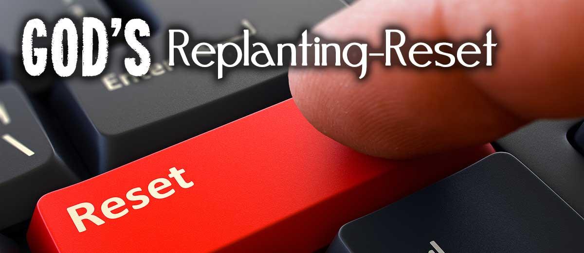 God's Replanting-Reset